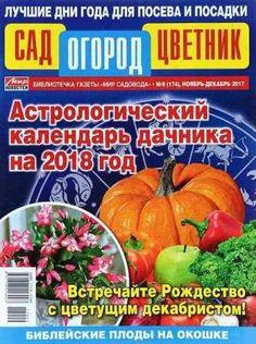 Сад огород цветник №9 2017 скачать бесплатно