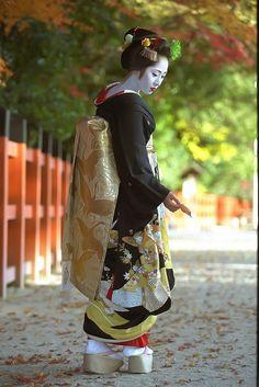 Maiko Geisha Umesato by Watasan: Hikizuri Kimono and Darari Obi with Yakko Shimada Hairstyle Japanese Geisha, Japanese Beauty, Asian Beauty, Geisha Art, Japanese Costume, Turning Japanese, Black Kimono, Art Japonais, Glamour