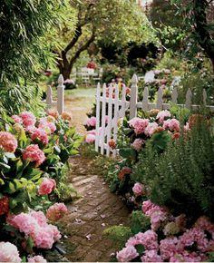 brick pavers, abundance of hydrangeas and a white picket fence