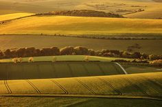 The beautiful South Downs