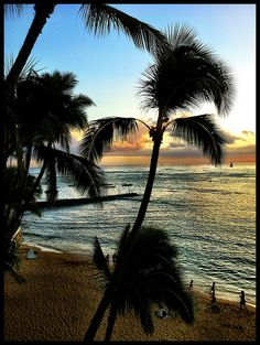 Honolulu, Hawaii (at this point, I'm too chicken to get on a plane or a cruise liner, but I may one day)