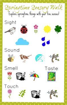Signs Of Spring Worksheet Kindergarten - Games For Kids Classroom, Preschool Classroom, Classroom Activities, Preschool Crafts, Spring Activities, Science Activities, Language Activities, Spring Theme, Spring Sign