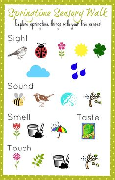 {Springtime Sensory Walk} Use this colorful printable to discuss the various signs of spring!