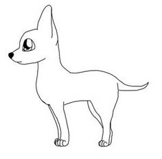 chihuahua coloring pages Bing