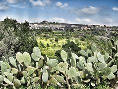 Spring in Sicily. Agrigento.