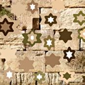 My Identity. All the colours of the stars are taken from a photograph of the Western Wall taken in daylight. http://www.spoonflower.com/designs/2402802
