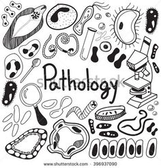 introduction and background of bacterial conjunctivitis biology essay Connect to download get pdf leonard norkin virology molecular biology and pathogenesispdf.