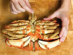 Slideshow: How to Clean and Crack Dungeness Crab  Sometimes we get crabby when we have to work for our food, but with its sweet, tender innards, cracking a crab is well worth the workout. Make it a family activity, where everyone cracks their own crustacean, for a fun and fulfilling meal that's full of protein!