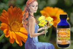 For sensitive skin Calendula (calendula officinalis), the skin care specialist, soothes and repairs. Ideal for sensitive, irritated and dry skin. Suitable for babies. Apply directly to the skin or add to your bespoke blend. New, lower price. Skin Care Specialist, Calendula Oil, Simply Organic, Infused Oils, Massage Oil, Dry Skin, Sensitive Skin, Bespoke, Lotion