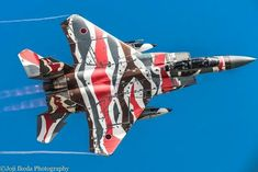 Military Jets, Military Aircraft, Fighter Aircraft, Fighter Jets, Grey Stuff, Aircraft Painting, Nose Art, Paint Schemes, Air Show