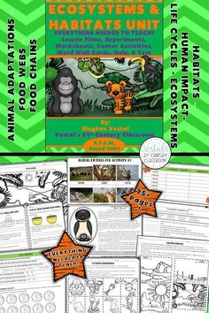 Ecosystems and Habitats Unit includes lesson plans, hands-on activities and experiments, worksheets, and video links. #vestals21stcenturyclassroom #4thgradescience #5thgradescience #ecosystemactivities #teachingecosystems #ecosystemsworksheets #ecosystemslessons #ecosystemsunit