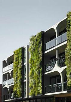 moderne architektur häuser vertikaler garten aussenfasade