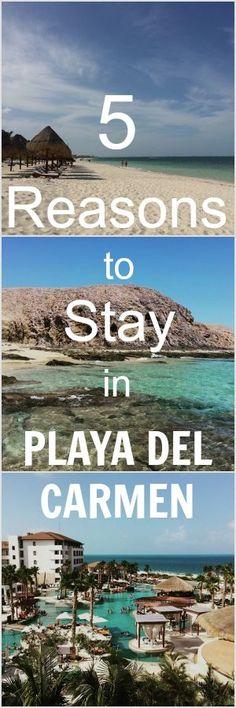Reasons to Stay in Playa del Carmen