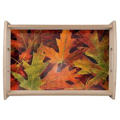 Fall into color/serving tray