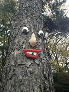 Tree face! Inspiration to make a cheshire cat smile.