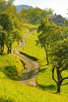 Long, winding road (Thones, France) by azluigi