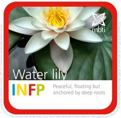 What MBTI plant type are you? INFP