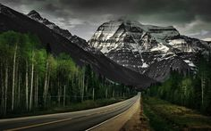 America, 4k, road, forest, mountains, USA