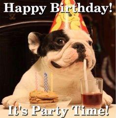 Happy birthday card bulldog party