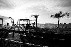Florianópolis, SC - Brasil - FOTOGRAFIA AUTORAL  É Proibido qualquer tipo de reprodução das imagens sem autorização. Imagem protegida pela Lei do Direito Autoral Nº 9.610 de 19/02/1998. Foto © Mariana Boro - A CASAA
