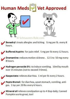 Meds approved by the Vet