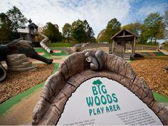 Big Woods Play Area at Lake Rebecca Park Reserve