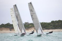 Steele, Hein & Donavon tussling for first place copy - Beach Cats World Network Catamaran, Sailing, Boat, World, Places, Candle, Dinghy, Lugares, Boats