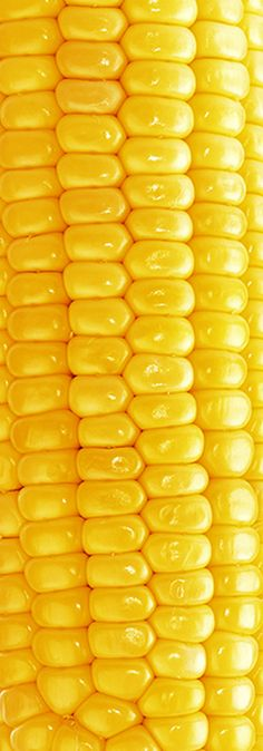 There are few things more satisfying than sinking your teeth into a hot, buttery cob of corn (just make sure you have a toothpick handy! Vegetable Pictures, Fruit Photography, Food Wallpaper, Yellow Nails, Yellow Shoes, Yellow Submarine, Colour Board, Shades Of Yellow, Mellow Yellow