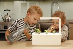 Terrific indoor herb garden with technology inspired by NASA. (That's serious basil!)