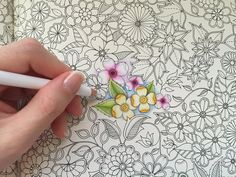 SECRET GARDEN | My Basic Flowers Coloring | Coloring With Colored Pencils