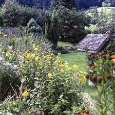 Kleine Sträucher eignen sich für Eigenschaft gliedern und Kopplung mit verschiedenen Blumen wie die hier zu sehen. Sträucher sind um fast jede zusätzlichen Funktionen, die Sie möglicherweise auch Streams und Steingärten, die groß.