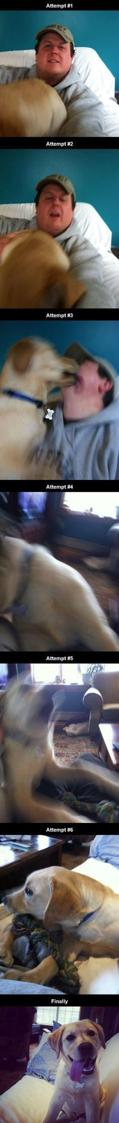 What Happens When You Try To Photograph a Puppy