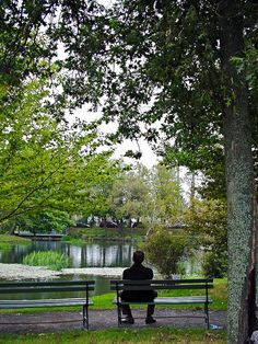 Victoria Gardens - Halifax, Nova Scotia, Canada ----- Can't wait for my visit in August. Victorian Benches, Victorian Era, Canada Cruise, Canada Travel, Halifax Public Gardens, The Places Youll Go, Places To Go, New England Cruises, Discover Canada