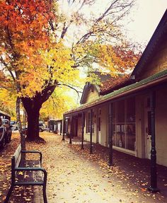 Hahndorf South Australia. Beautiful Autumn colours Australia Photos, South Australia, Living In Adelaide, Sister Day, Places To Visit, Autumn Colours, Adventure, Country, City