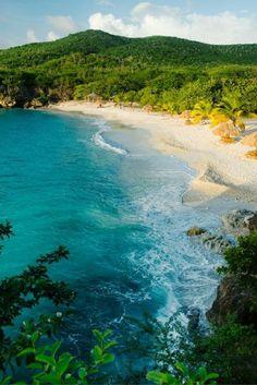 Zou jij over 2 dagen wel op het Curaçaose strand willen liggen?🌴 Cocktailtje in je hand en af en toe eens een verfrissende duik in de azuurblauwe zee... Klinkt perfect toch? Het kan echt! Bekijk razendsnel deze deal en op naar Curaçao! https://ticketspy.nl/deals/super-last-minute-7-daagse-bingoreis-curacao-inclusief-klm-tickets-va-e479/