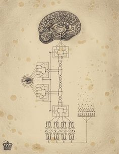 Drawings from Soul of Science, a book on the mysteries of scientific diagrams, secrets of symbols and their everlasting effect, by Mexican artist Daniel Martin Diaz.