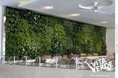 Exotic-greenery-vertical-gardening-plants-with-small-modern-water-fountain-also-rattan-basket-fruit-stand-plus-white-ceiling-fan.jpg (1024×679)