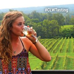 Let's Learn About the Cayuga Lake Wine Trail   The Wine Write