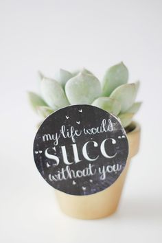 my life would SUCK without you (succulent valentine idea) - see kate sew