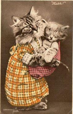 Vintage Postcard of Dressed Cat Kitten Hush | eBay