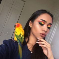 sun conure, parrot makeup