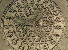 Polêmica sobre agroglifo surgido em Ansty, na Inglaterra Colin Andrews, um dos…