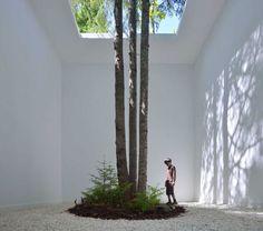 Courtesy of Nature - Johan Selbing  Execution 2013 | Grand-Métis, Canada | Client: Jardins de Métis |