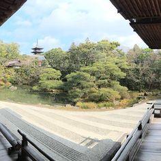 【nakaitaxi_kyoto】さんのInstagramをピンしています。 《中井タクシーの京都観光情報🚕 仁和寺庭園‼️ #Kyoto #Japan #Shrine #Temple #京都 #社寺 #紅葉 #桜》