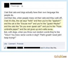 Do you even speak cat?