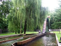 Log Flume :) Camden Park ~ West Virginia's only amusement park ~ over 100 yrs. old & located in my hometown Huntington! Virginia Homes, West Virginia, Camden Park, West Va, Charleston Wv, Road Trip Adventure, Beautiful Sites, Take Me Home, Dream Vacations