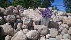 Kuvahaun tulos haulle luonnonkivi piha