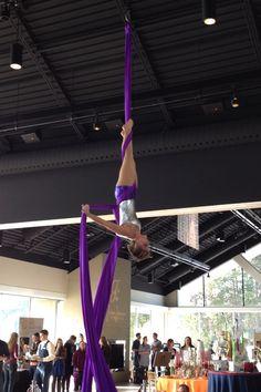 Aerial performance 1/19/13 silk tissu