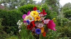 July gathering of colour from my flower farm.