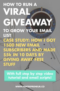 Case Study: How to use Viral Giveaways to Grow Your Email List (1500 new subscribers and $5k in 10 days) — FEMTREPRENEUR